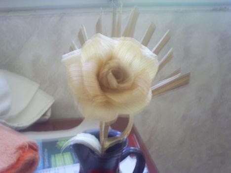 csuhé rózsáim 002