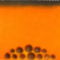 Aszott narancsok 2011