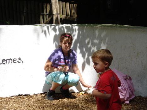 Kép 036 állatkertben