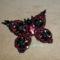 fekete-bordó pillangó
