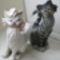11. száradó macskák