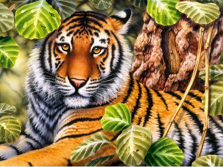 rajzos állatok 17
