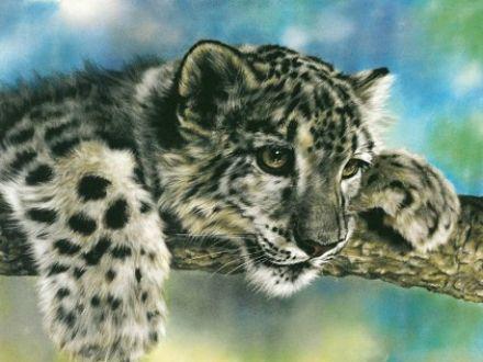 rajzos állatok 5