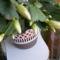 Fehér kaktusz bimbó