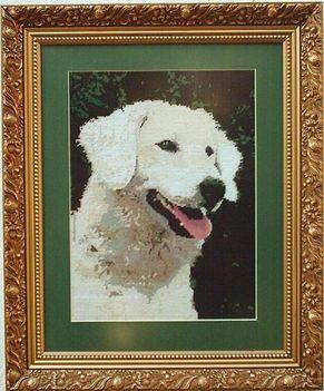 Beni kutyánk emlékére
