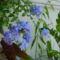 virág 011 fokföldi ólomvirág