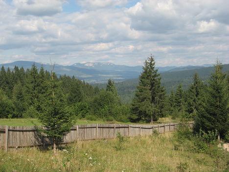 Hagymas-hegyseg madartavlatbol(kb. 25 km)
