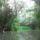 Tisza-tavi csónak kirándulás