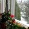 Tél 16
