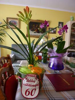 2011 virágok 011