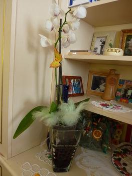 2011 virágok 014