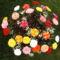 30 szál horgolt rózsa Szülinap 021