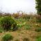 2012 kertiképek 1