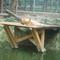 nyiregyháza vadaspark 061
