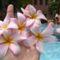 virágok ujak között