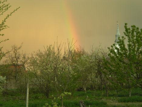 Kert 2012 Apr.28 1