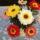 Horgolt virág Anyák napjára 031
