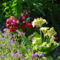 Májusi virágok 2
