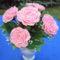 Rózsaszín horgolt rózsák Koszorús lánynak 001