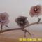 harisnya virágaim 039