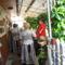 Látogatóim Dunaharaszti sváb kórus 4