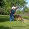 kutyánk 7