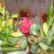 Szülinapi virágaim ...
