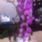 Rotation of süteményem és a virágaim 004