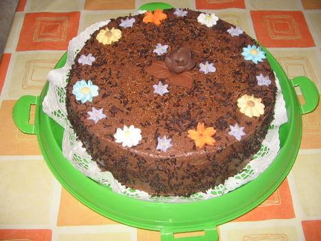 IMG_0849  csokis
