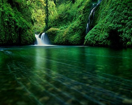 nature forest waterfalls rivers