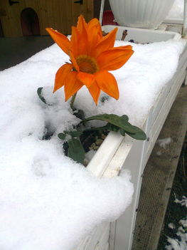 Csodás a természet... 2012_nov