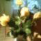 Utolsó rózsáim_2012_nov