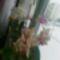 virágzó orchídeáim 11