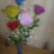 Zsuzsa rózsái