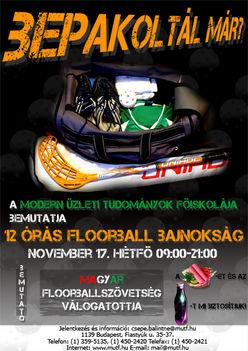 floorball_plakat_pici