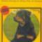 Adolf Ringer Rottweiler könyv