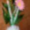 Csilla virága