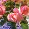 Csokor rózsa