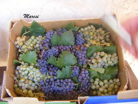 Vegyes szőlő