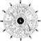 Iridology_iris_eye_chart_left_mirror