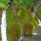 Plitvice8