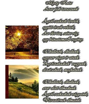 őszi 2