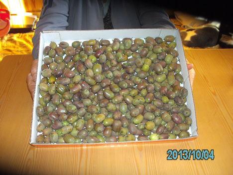 2013, évi  mini kiwi termésem. Finom , édes.