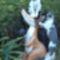 Így tisztelik a kerti kerámiáimat a macskák