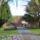Canberra__tavaszi_viragzas_5_1416100_8460_t