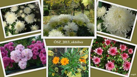 Ősz_2013_október