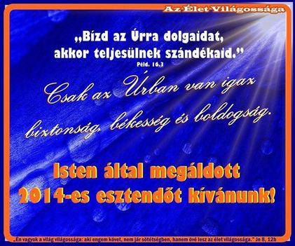 Isten által megáldott 2014-es esztendőt kívánunk!