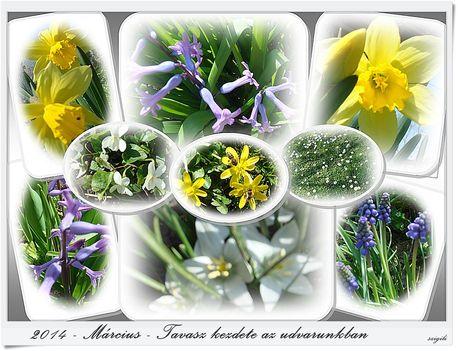 Tavaszodik_2014