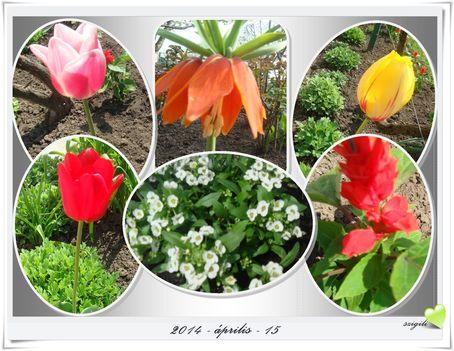 Tavasz a kertben 2