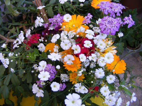 Kertem virágai csokorban